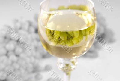 Grapes and white wine