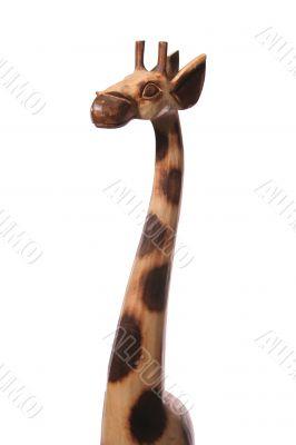 giraffe short light close 3/4