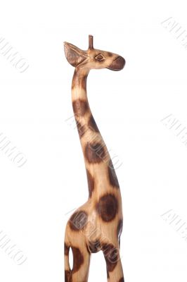 giraffe short light profile