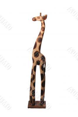 giraffe high light profile
