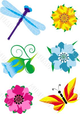 insects and flowers set