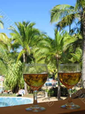 beer glasses in a tropical environment