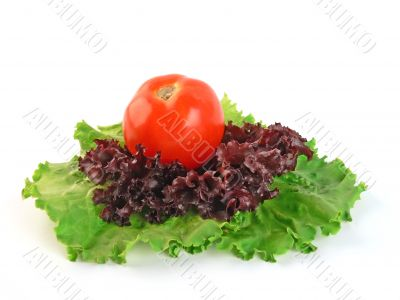 Tomato on salad