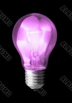 violet light bulb