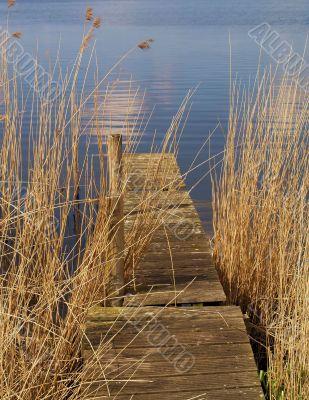 Lake and weed