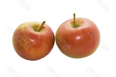 Two red ripe apples isolated