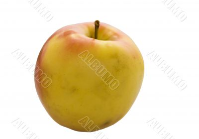 Yellow apple with stem isolated on white