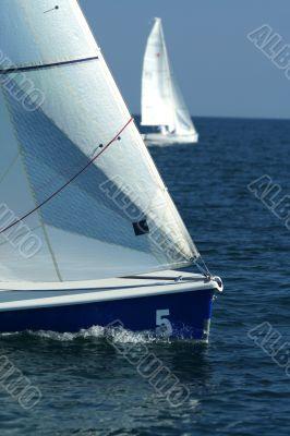 The winner and losed / Sailing sport / regatta