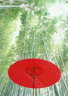 Japan umbrella