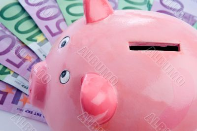 Pink piggy-bank over many notes