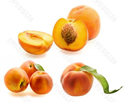 set of fresh ripe peaches