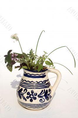 Fresh herbs in vase