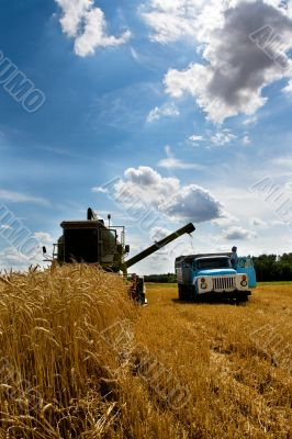 Combine at harvest time
