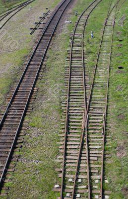 Rails in green grass