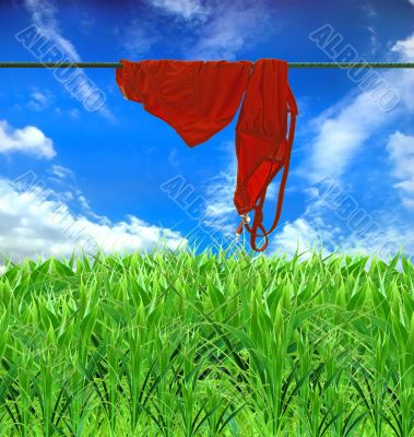 a wet swimming suit dries on a background blue sky