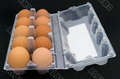 Ten eggs in packing