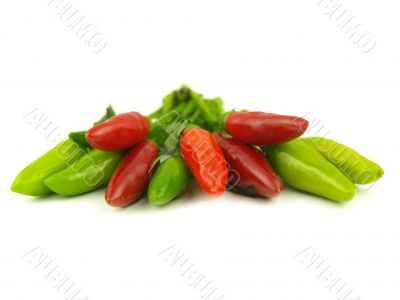 chili pepper and hot red pepper very close