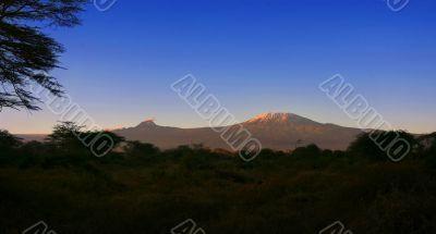 Kilimanjaro Mountain Morning