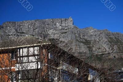Building, tree and Table Mountain