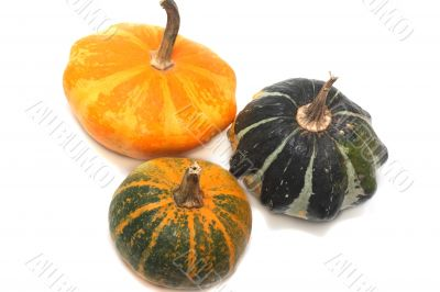 Three fancy pumpkins