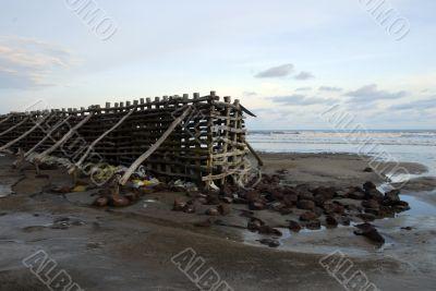 Shankarpur beach west bengal India