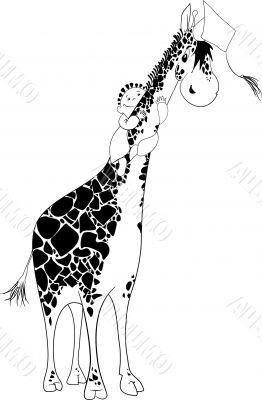 Aboard a Giraffe