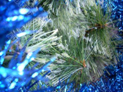 Christmas pine tree needles