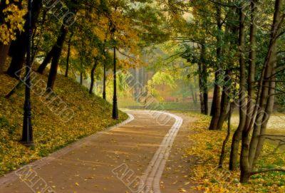 autumn`s landscape
