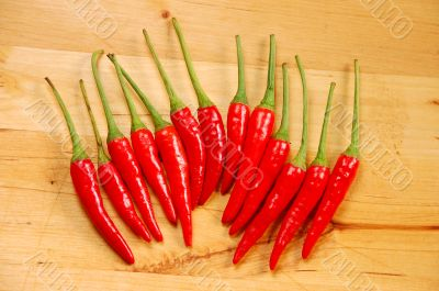 Row of red chili peppers