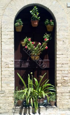 Monterubbiano - House door with potted plants and flowers