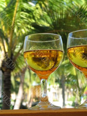 beer glasses close up in a tropical layout
