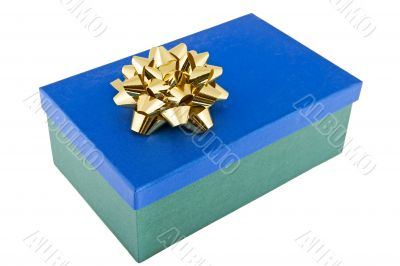 Christmas package adorned with bow
