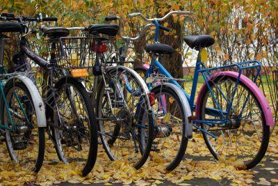 Few bikes on stand