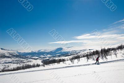 Skier exercising