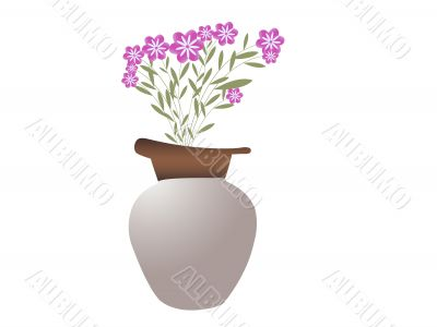 pot with beautiful  flowers
