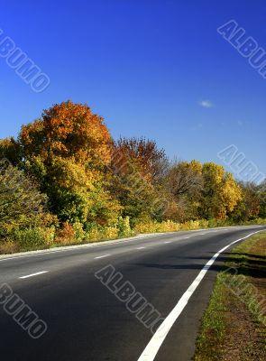 Autumn road / Fall scenic