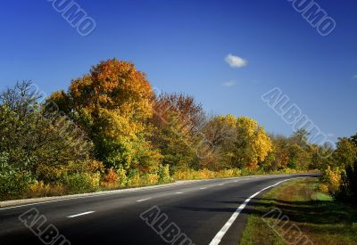 Autumn road / Fall scenic