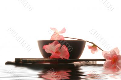 Chinese sticks, plate and cup in water