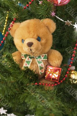 Plush toy bear in the banch of Cristmas-tree