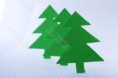 Paper spruces