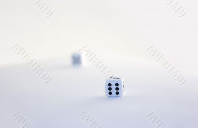 Dices on white surface