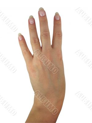 Human lady hand showing four fingers isolated over white background