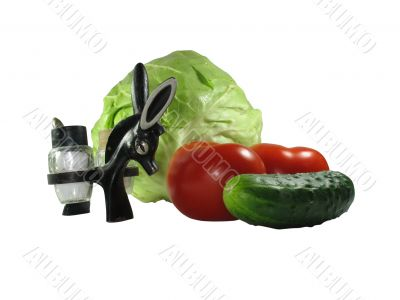 Set of vegetables with kitchen device