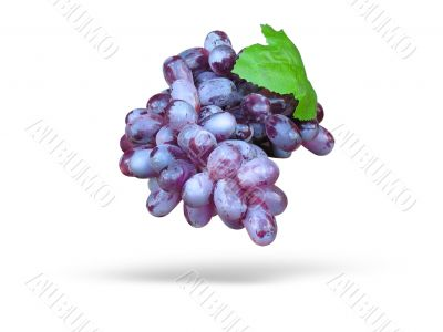 Pink grape with leave and shadow isolated over white background