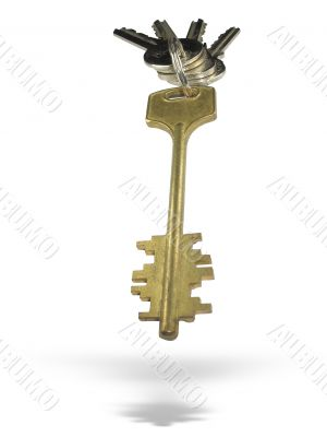 Metallic keys with ring and shadow isolated over white background