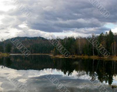 Dark forest near lake