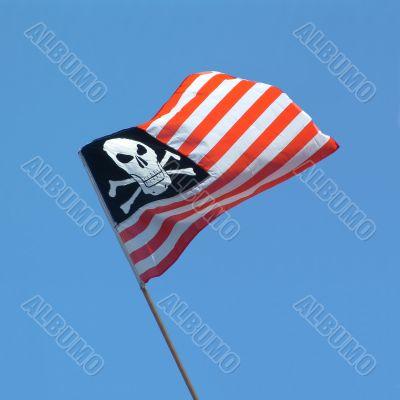 skull and crossbones USA flag