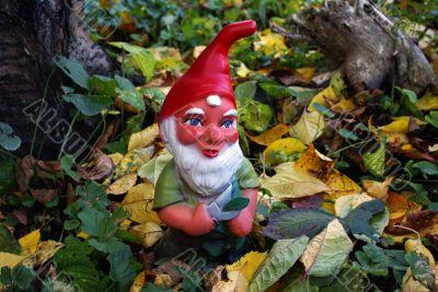 Garden Gnome In Autumn