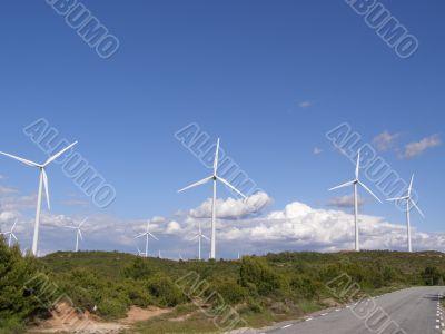 Wind Mill Landscape