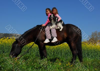 twins, dog and horse